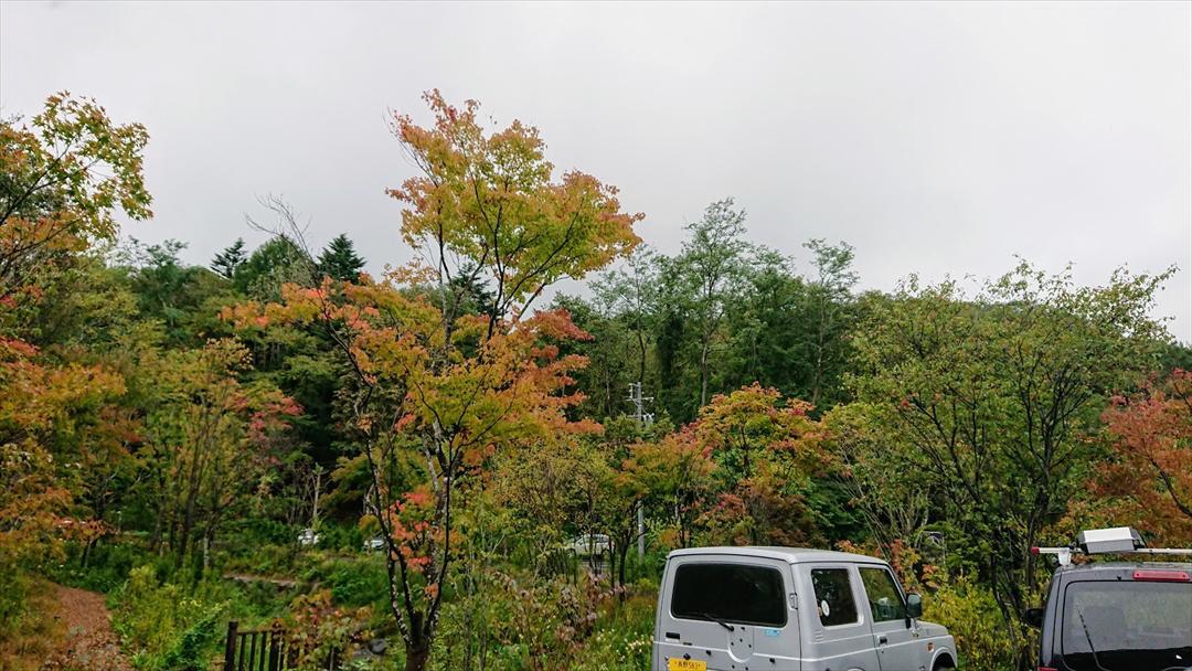 https://hayashida.jp/o/PIC_20180925_144536_DSC_0003_R.JPG