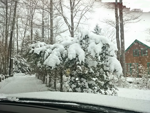 2015-feb-snow.jpg