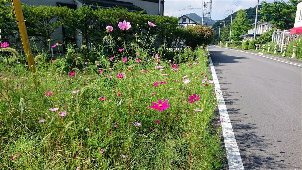 https://hayashida.jp/o/images2019-/DSC_0013_R1024.JPG