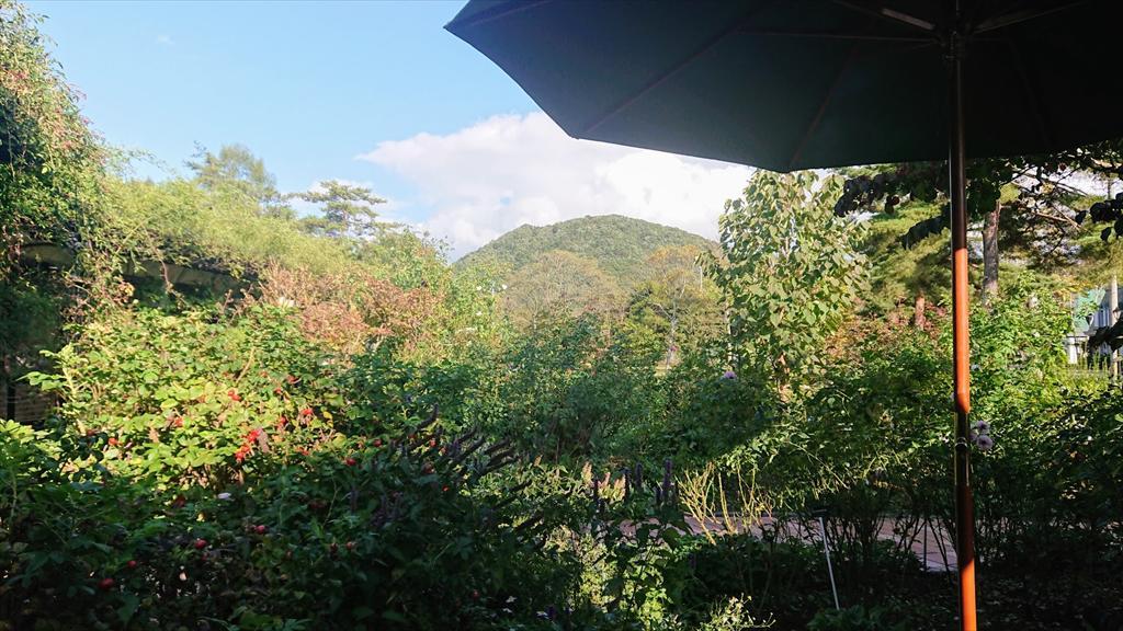 https://hayashida.jp/o/images2019-/DSC_0536_R.JPG