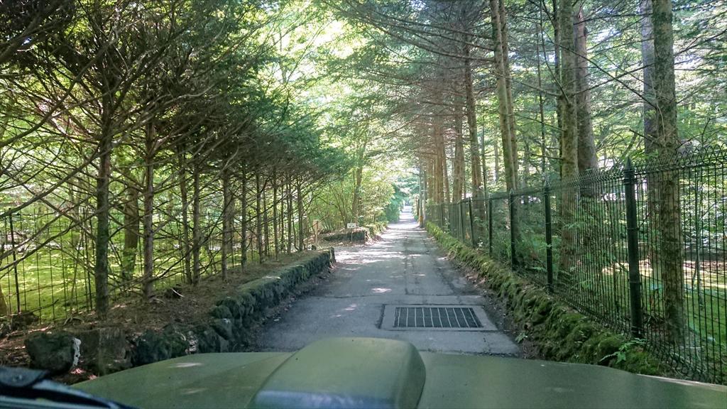 https://hayashida.jp/o/images2019-/DSC_2434_R.JPG