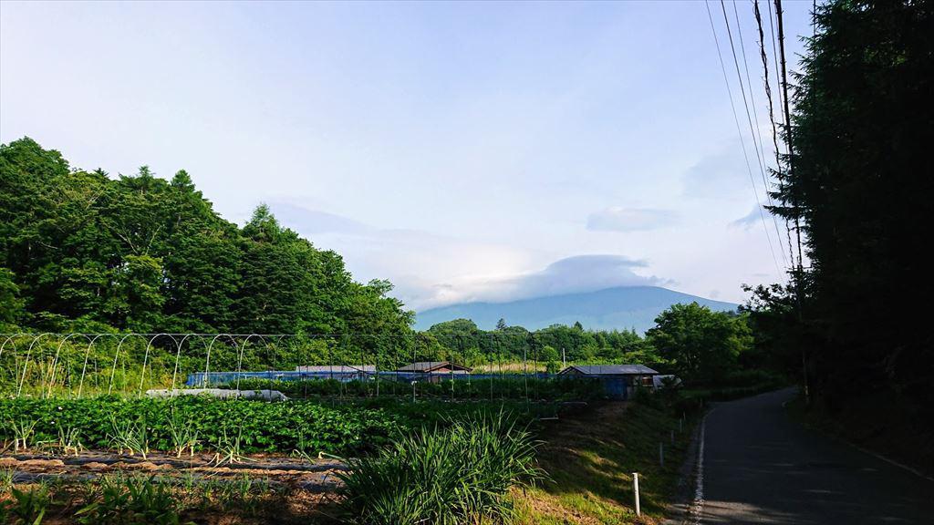 https://hayashida.jp/o/images2019-/PIC_20190627_065415_DSC_0002_R.JPG